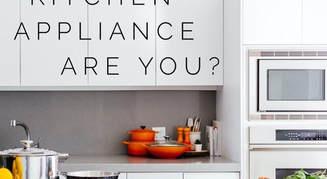 What kind of kitchen appliance are you?